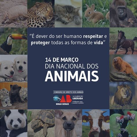 posted in noticias on 14 de marco de 2017 by saaers 14 de mar 231 o 233 dia nacional dos animais oab uberaba 14 170