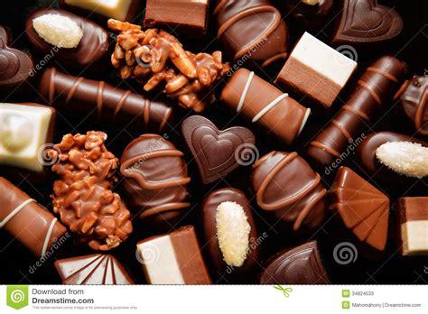 luxury choclate praline stock image image of dessert