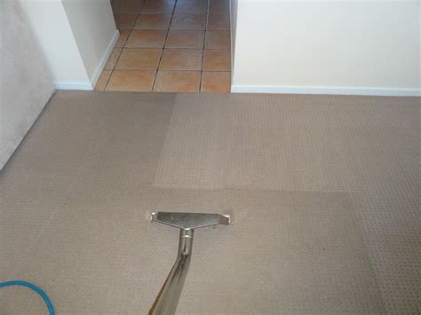 professional carpet cleaners carpet cleaning advice for homeowners and tenants best 1