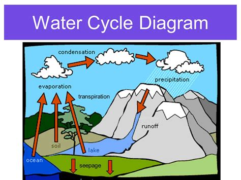 water cycle diagram with explanation diagram of the water cycle choice image how to guide and