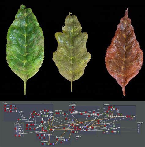 zbrush leaf tutorial artstation procedural leaves substance designer hugo