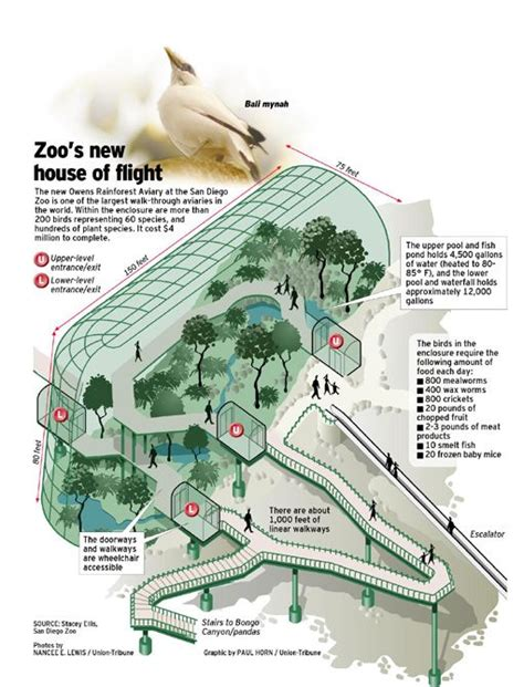 zoo design criteria 17 best images about aviary on pinterest portal master