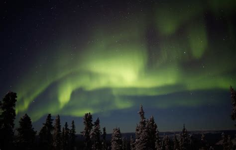 northern lights forecast fairbanks alaska fairbanks northern lights forecast