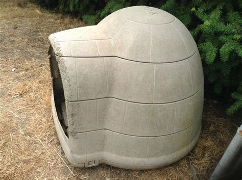 dog house igloo igloo dog house large crofton cowichan