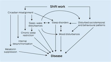 working swing shift effects sleep loss and circadian disruption in shift work health