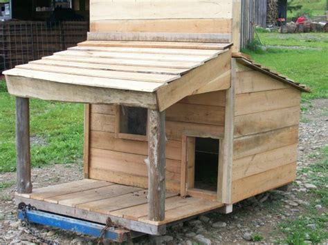 Goat Shed Design And Pictures by Healthy Milk And More Backyard Goats Microfarm Organic