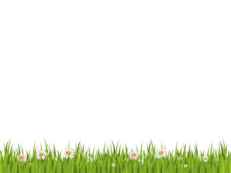 green wallpaper transparent grass png image green picture