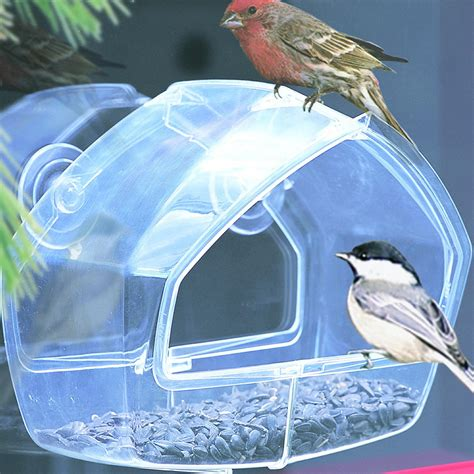 amazon com birdscapes clear window feeder 348 wild