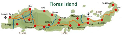 amazing flores part  story   footsteps