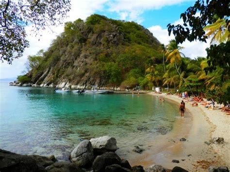plage de Pain de Sucre   Photo de Les Saintes, Guadeloupe   TripAdvisor