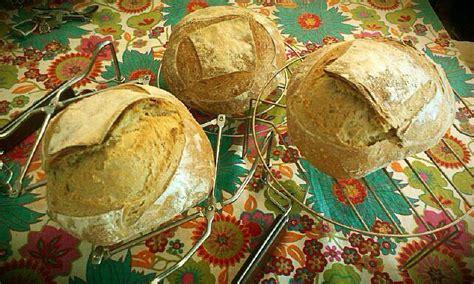 65 hydration sourdough three amigos bread the fresh loaf
