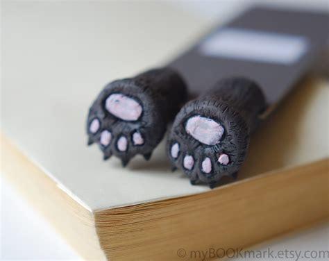 libro just because un oso separador de libros bear cat paws bear paws and bears