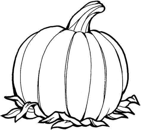 printable pumpkin pictures coloring home pumpkin outline printable coloring home
