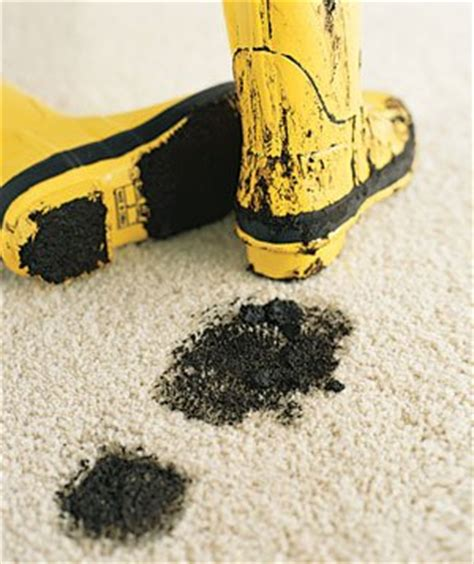 what is rugs in healthcare is carpet cleaning for your health we clean for your health