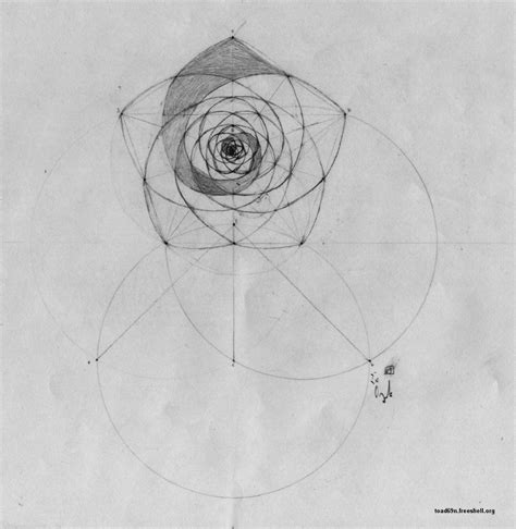 pentagon tattoo golden spiral in golden spiral in pentagon
