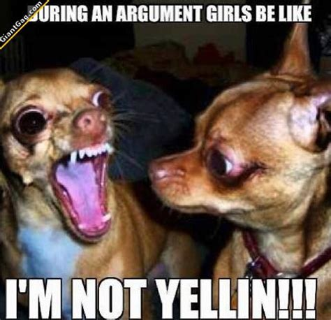 Bitches Be Like Meme - during an argument girls be like i m not yelling lauraagudelo272
