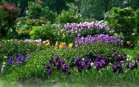 Mjo Flower botanical gardens