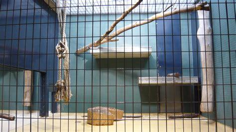 zoologischer garten berlin poster les d 233 cors villa morel