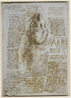 leonardo da vinci biographical notes 1000 images about leonardo da vinci on pinterest