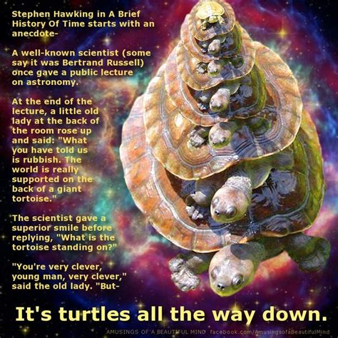turtles all the way series 1 14 best images about turtles all the way on