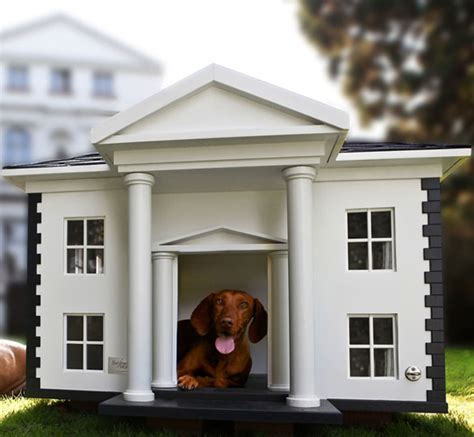 mansion dog house dog mansion