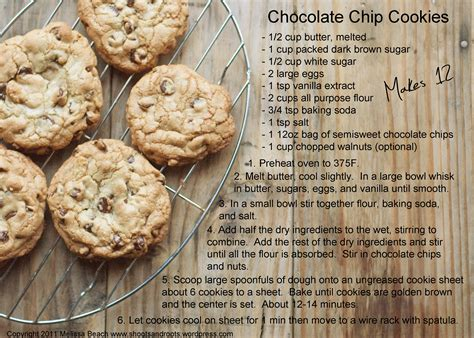 cookie recipe chewy chocolate chip cookies shoots and roots