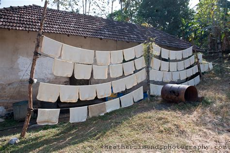 rubber st production on the way to the tea plantations kerala india