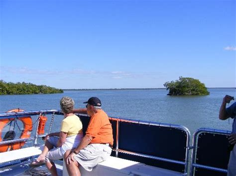 are everglades boats worth the money old trading post in everglades city picture of