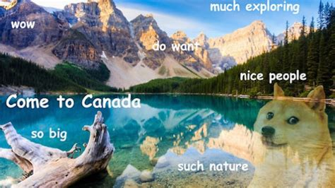 along with the gods canada doge is an actually good internet meme wow