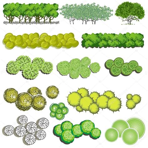 Landscape Architecture Icons Trees And Bush Item Top View For Landscape Design Vector