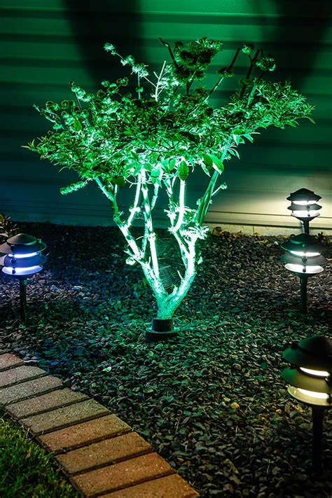 landscape led light bulbs landscape led light bulbs 5 watt 12v flex led par36