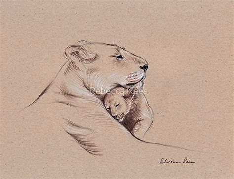 Couple Kiss Wall Stickers quot quot a mother s pride quot lioness and cub original pencil