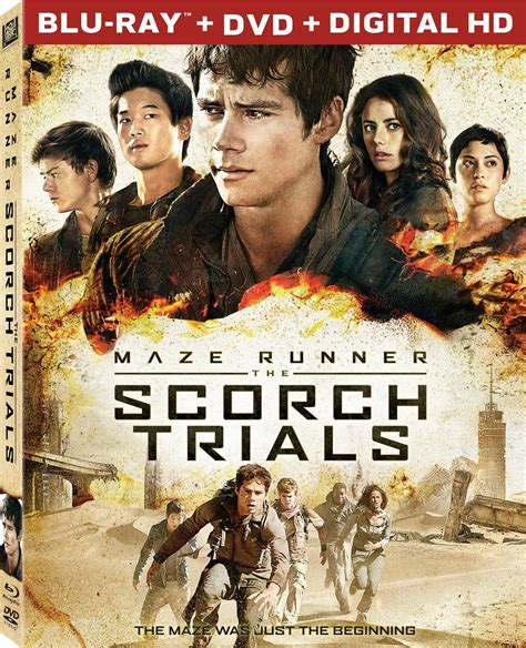 film maze runner dvd maze runner 2 scorch trials dvd release date december 15