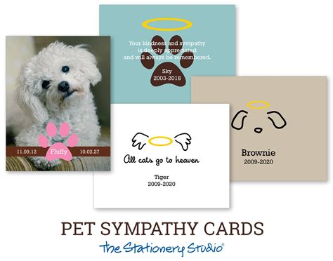 content template for veterinary sympathy card new personalized pet condolence cards financialcontent