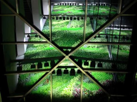 spain s largest vertical garden cleans indoor office air