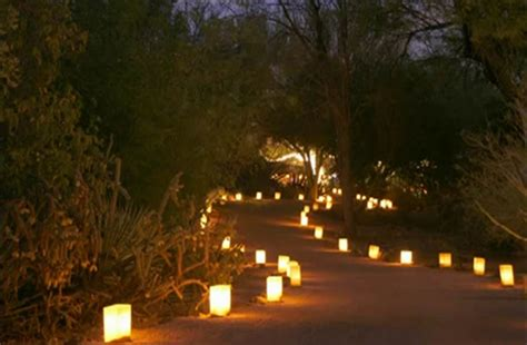 lights for cheap garden decorations by a professional planner