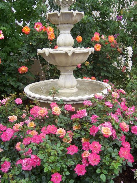 The 2 Minute Gardener: Photo   Roses around a water fountain