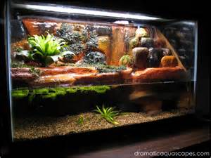 dramatic aquascapes diy aquarium background plateau
