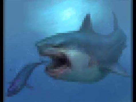 real megalodon shark youtube