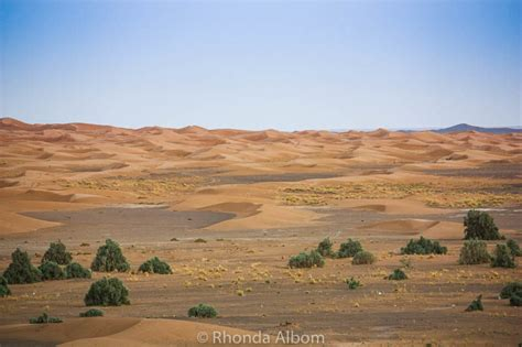 in the desert the hinterland of algiers classic reprint books colors of the desert a travel photography expos 233