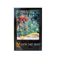 Benih Selada Dacosta New Day Seed 1 Gram daftar nama bunga lengkap beserta gambar dan penjelasannya