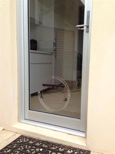 pet door glass wa glass pet doors gallery doors cat doors perth