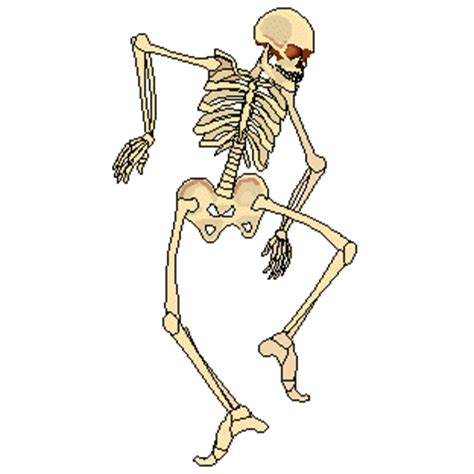 skeleton sticker for ios & android | giphy