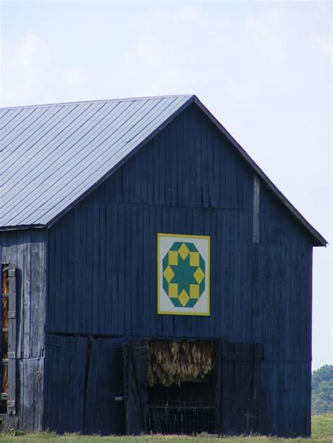 quilt pattern on barns in kentucky central kentucky barn see the tobacco hanging to dry