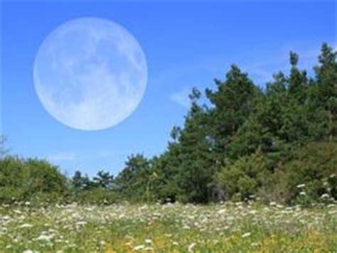 l influence de la lune au jardin