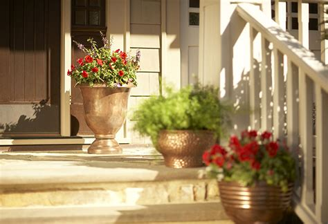 buying guide  container gardens   home depot