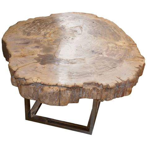 petrified wood slab table for sale at 1stdibs