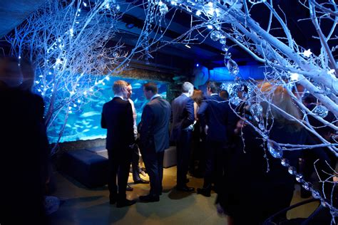 themed dinner events london shared christmas party at the london aquarium melon