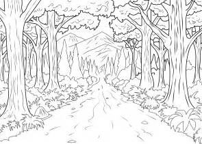 forest color a coloring page of forest made by from the gallery
