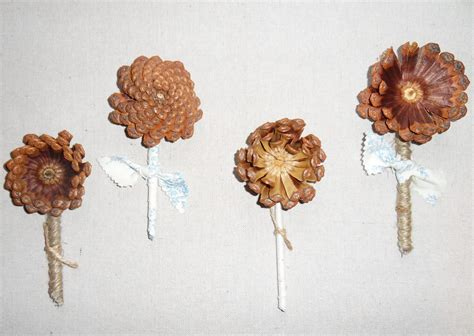 easy pine cone projects pine cone pine and pinecone